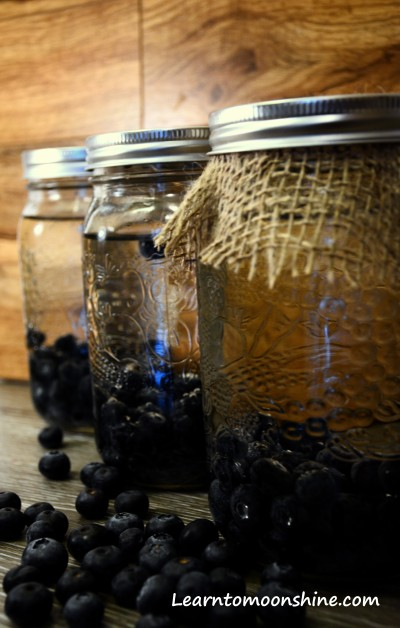 Homemade, Blueberry, Moonshine