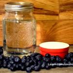 Ingredients to make blueberry moonshine